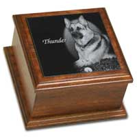 6x6 African Mahogany Pet Cremation Urn
