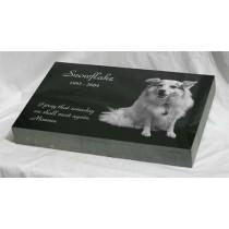 16 x 10 x 2 Memorial Pet Marker