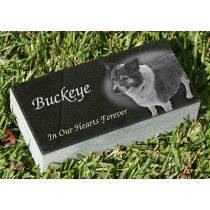 8 x 4 x 2 Memorial Pet Marker